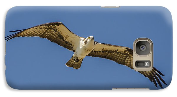 Galaxy Case featuring the photograph Osprey In Flight Spreading His Wings by Dale Powell