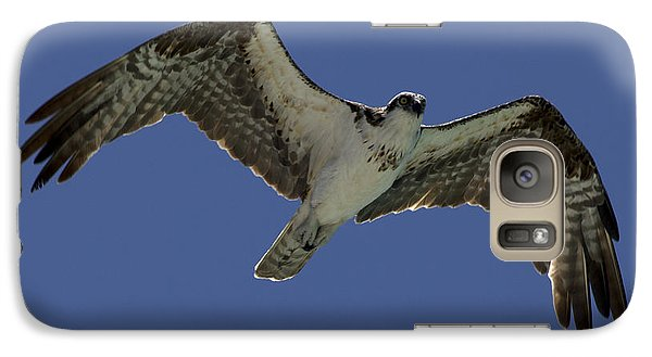 Galaxy Case featuring the photograph Osprey In Flight Photo by Meg Rousher
