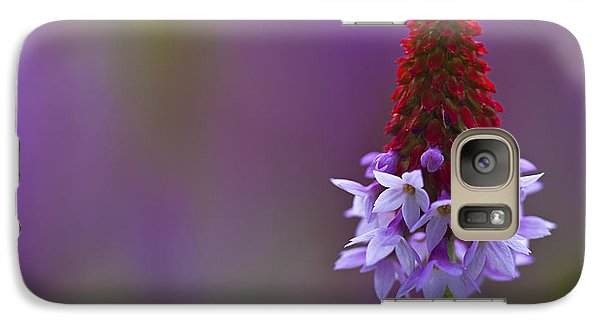 Galaxy Case featuring the photograph Primula Vialii  by Zoe Ferrie