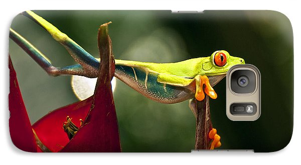 Galaxy Case featuring the photograph Red Eyed Tree Frog 1 by Jialin Nie Cox WorldViews