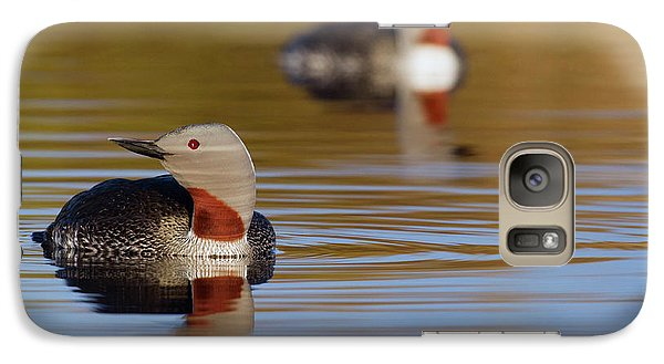 Loon Galaxy S7 Case - Red-throated Loon Pair by Ken Archer