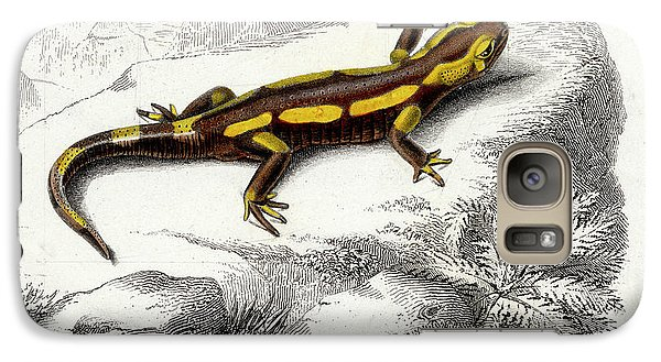 Salamanders Galaxy S7 Case - Salamander by Collection Abecasis