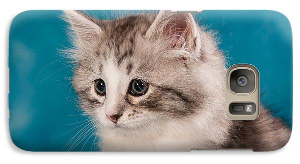 Cat Galaxy S7 Case - Sibirian Cat Kitten by Doreen Zorn