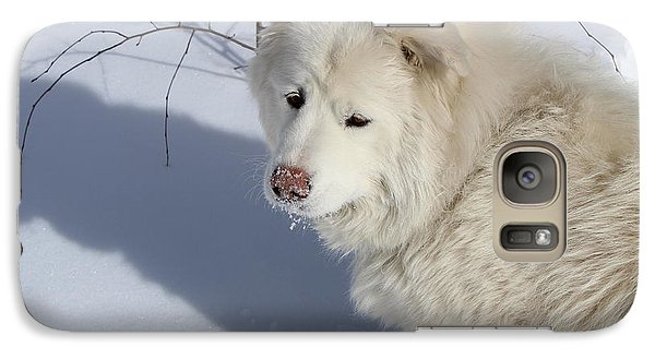 Galaxy Case featuring the photograph Snowy Nose by Fiona Kennard