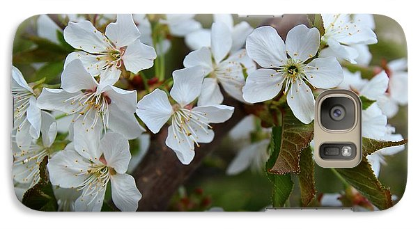 Galaxy Case featuring the photograph Spring Blossoms by Lynn Hopwood