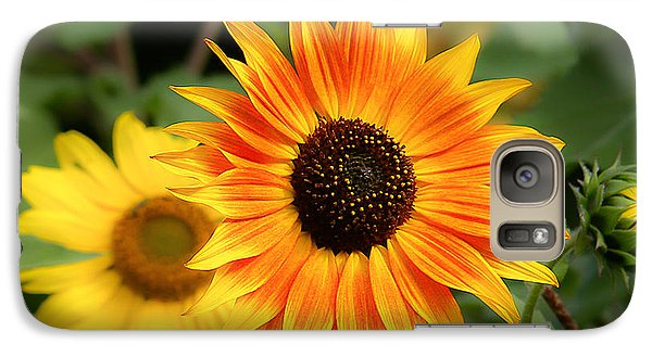 Galaxy Case featuring the photograph Sunflowers by Dennis Bucklin