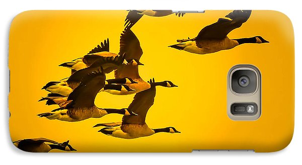 Galaxy Case featuring the photograph Sunset Geese by Brian Stevens
