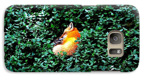 Galaxy Case featuring the photograph Sweet Slumber by Deena Stoddard