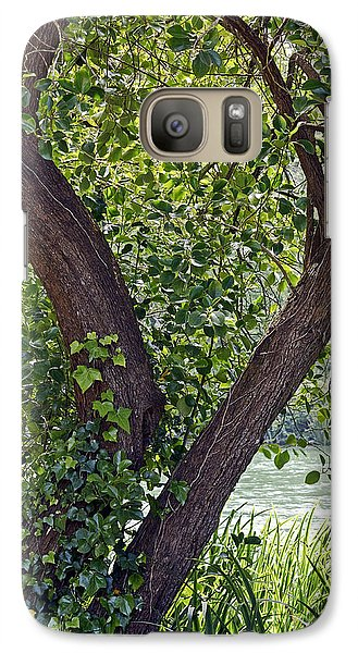 Galaxy Case featuring the photograph Tree At Stow Lake by Kate Brown