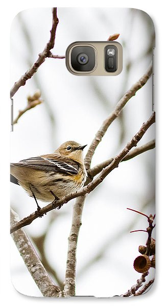 Galaxy Case featuring the photograph Warbler Calls by Annette Hugen