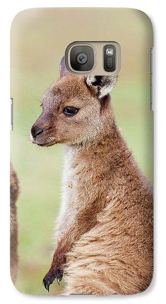 Western Grey Kangaroo (macropus Galaxy Case by Martin Zwick