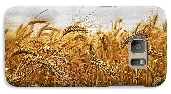 Wheat Galaxy S7 Case