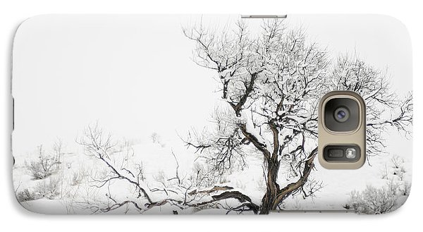 Galaxy Case featuring the photograph Winter Sage by Sandi Mikuse