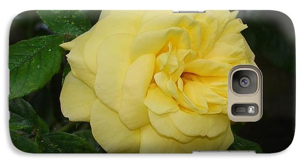 Galaxy Case featuring the photograph Yellow Rose  by Katy Mei