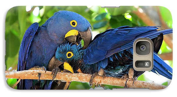 Brazil, Mato Grosso, The Pantanal Galaxy S7 Case