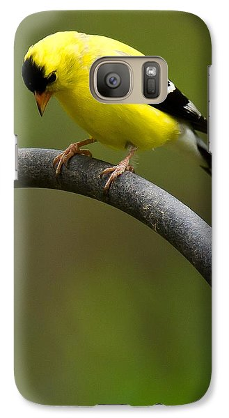 Galaxy Case featuring the photograph American Goldfinch by Robert L Jackson