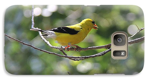 Galaxy Case featuring the photograph American Goldfinch by Yumi Johnson