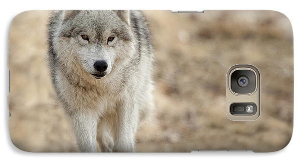 Galaxy Case featuring the photograph Arctic Wolf by Wolves Only