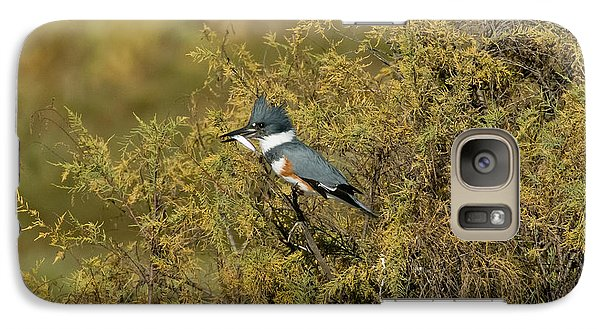 Belted Kingfisher With Fish Galaxy S7 Case by Anthony Mercieca