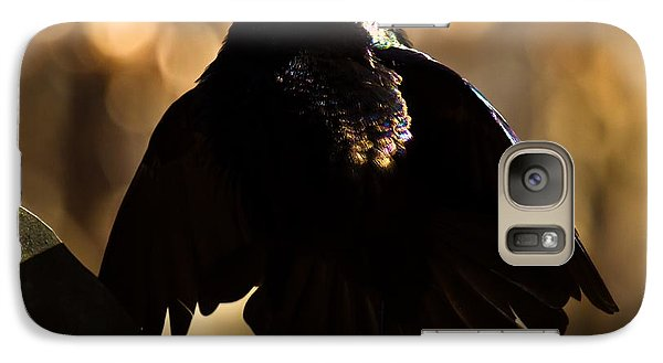 Galaxy Case featuring the photograph Common Grackle by Robert L Jackson