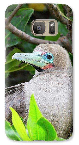 Ecuador, Galapagos Islands, Genovesa Galaxy S7 Case