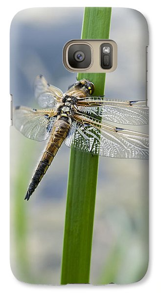 Galaxy Case featuring the photograph Four-spotted Chaser Dragonfly by David Isaacson