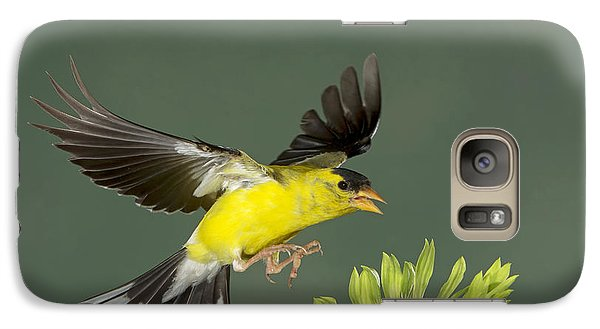 Galaxy Case featuring the photograph Gotcha by Gerry Sibell