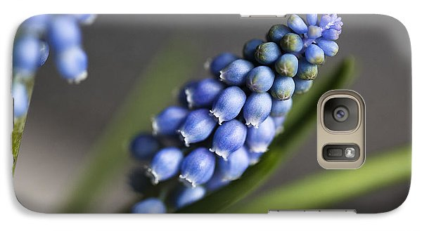 Grape Hyacinth Galaxy S7 Case