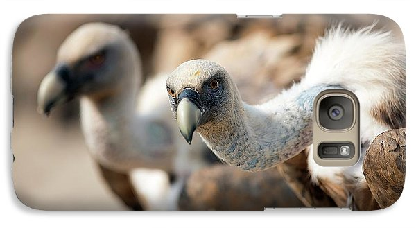Griffon Vultures Galaxy Case by Nicolas Reusens