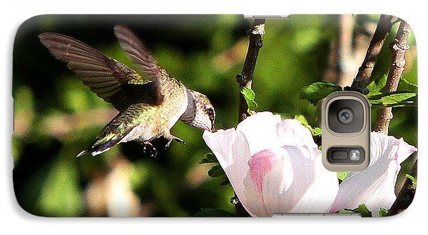 Galaxy Case featuring the photograph Hummingbird by John Freidenberg