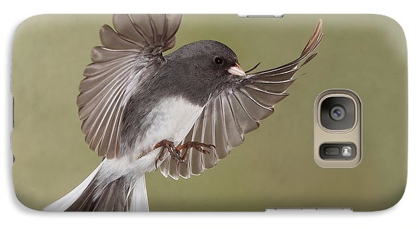 Galaxy Case featuring the photograph Jimmy Junco by Gerry Sibell