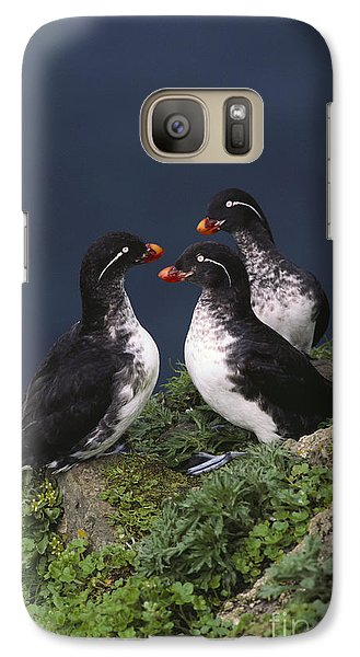 Parakeet Auklet Galaxy S7 Case