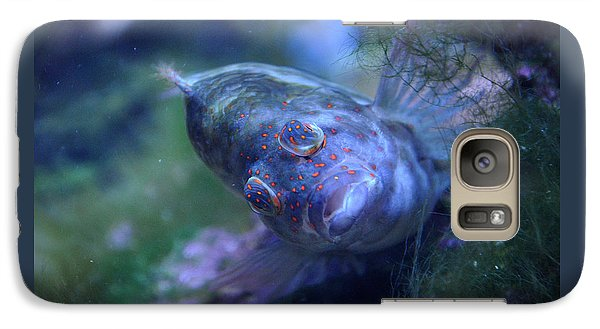 Galaxy Case featuring the photograph Redspotted Hawkfish  by Savannah Gibbs