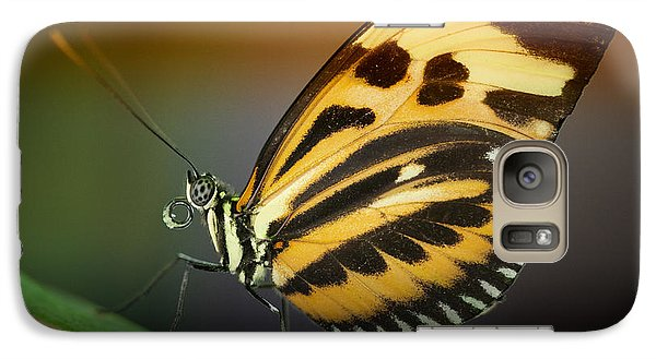 Galaxy Case featuring the photograph Resting Butterfly by Zoe Ferrie