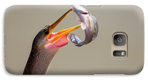 Anhinga Galaxy S7 Case - Brazil, Mato Grosso, The Pantanal by Ellen Goff