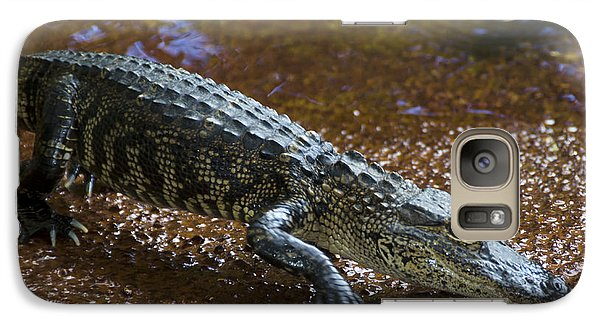 American Alligator Galaxy S7 Case by Mark Newman