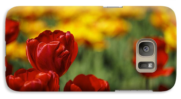 Red And Yellow Tulips Galaxy Case by Nailia Schwarz