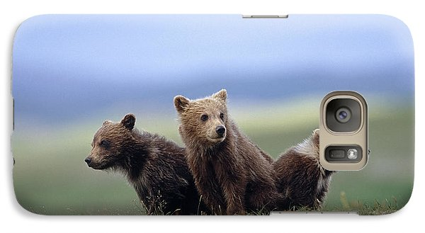 4 Young Brown Bear Cubs Huddled Galaxy Case by Eberhard Brunner