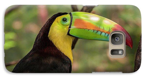 Toucan Galaxy S7 Case - Central America, Honduras, Roatan by Jim Engelbrecht