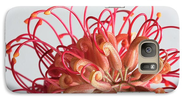 Galaxy Case featuring the photograph Grevillea Flower by Shirley Mitchell