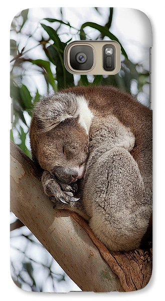 Koala (phascolarctos Cinereus Galaxy S7 Case