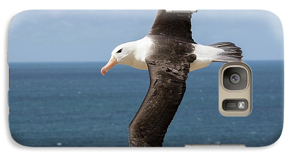 Black-browed Albatross (thalassarche Galaxy S7 Case