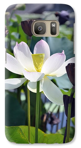 Galaxy Case featuring the painting Water Lily by Dottie Branchreeves