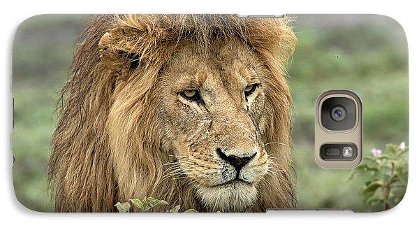 Lion Galaxy S7 Case - Africa, Tanzania, Serengeti by Charles Sleicher