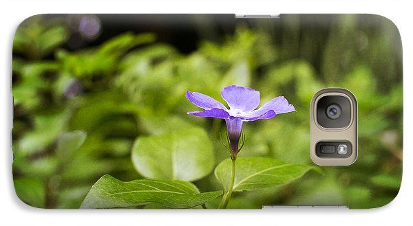 Galaxy Case featuring the photograph A Bit Of Purple by Maria Janicki