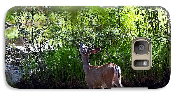Galaxy Case featuring the photograph A Buck Feeding by Brian Williamson