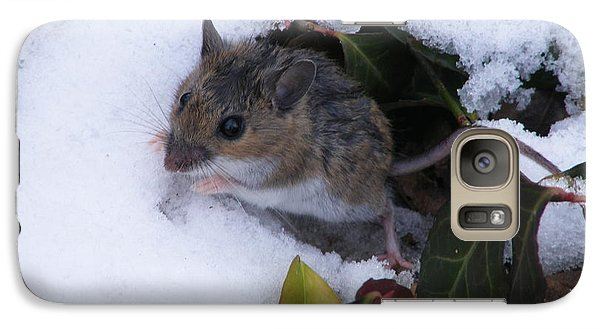 Galaxy Case featuring the photograph A Chilly Afternoon by Nancy Kane Chapman