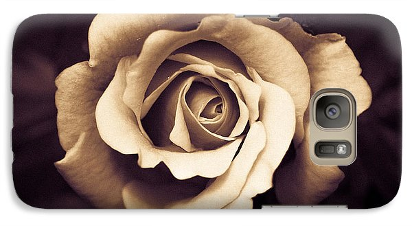 Galaxy Case featuring the photograph A Chocolate Raspberry Rose by Wade Brooks