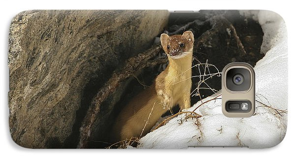 Galaxy Case featuring the photograph A Curious Glance by Gary Hall
