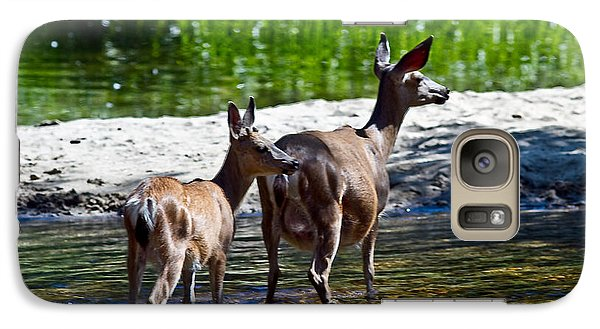 Galaxy Case featuring the photograph A Doe And Fawn by Brian Williamson